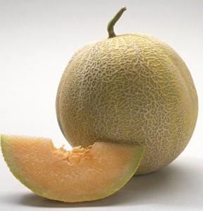 полезные свойства овощей и фруктов,  полезные свойства дыни