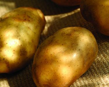 полезные свойства овощей и фруктов,  полезные свойства картофеля