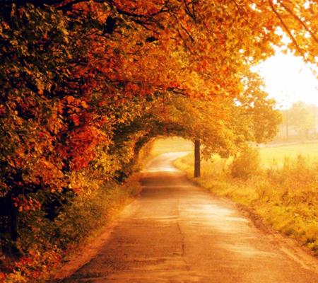 осенний пейзаж фото, картинки, красивые осенние пейзажи