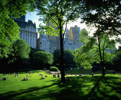 аллеи центрального парка, нью йорк