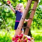 Что нельзя делать за ребенка
