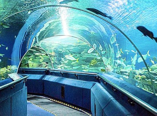 океанариум Куала-Лумпур