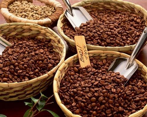 сорта кофе - арабика и робуста