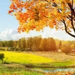 Планы на осень — 30 важных дел