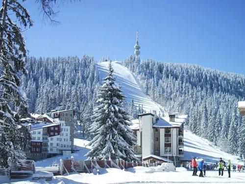 лыжный курорт Пампорово, Болгария, фото