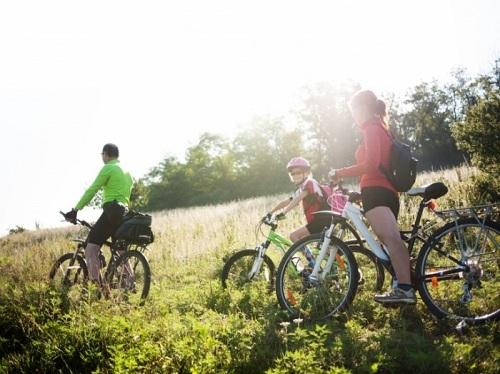 преимущества активного семейного отдыха