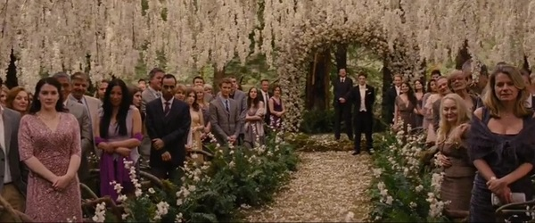 стефани майер в эпизоде на свадьбе Бэллы и Эдварда