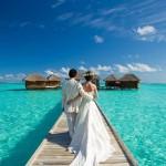 «Сладкое» уединение молодых: как провести медовый месяц