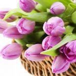 Что подарить на 8 марта? Идеи подарков, которые точно понравятся!
