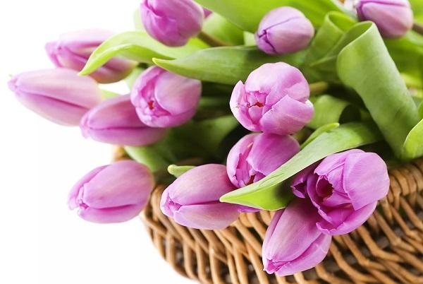 подарок - цветы на 8 марта