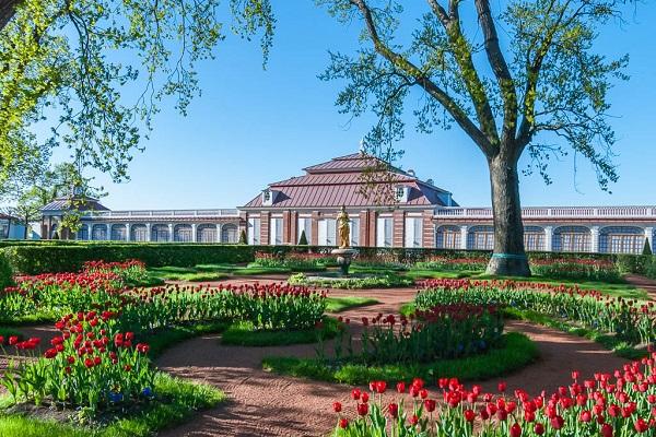 петергоф, дворец монплезир - советы туристам