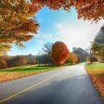 Сентябрь — список из 15 приятных и важных дел