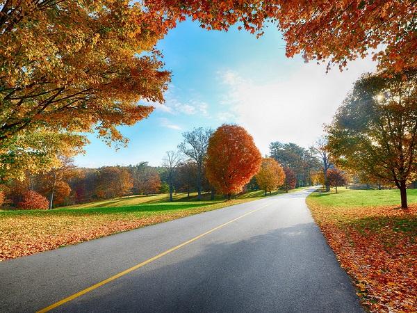 сентябрь, список важных дел, что следать в сентябре