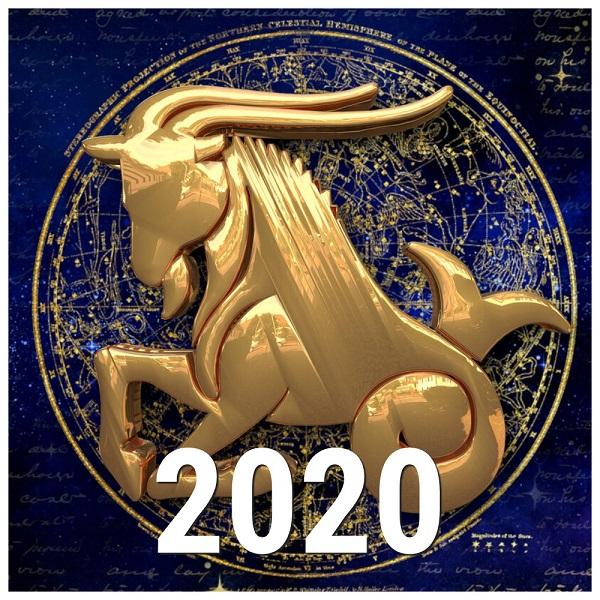 козерог - гороскоп на 2020 год, работа, карьера, любовь, отношения